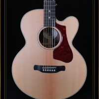 Gibson AG Parlor Rosewood