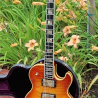 1973 Gibson L5-S