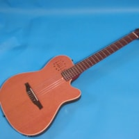 Godin Multiac Encore Nylon