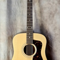 Guild USA D-40 Traditional
