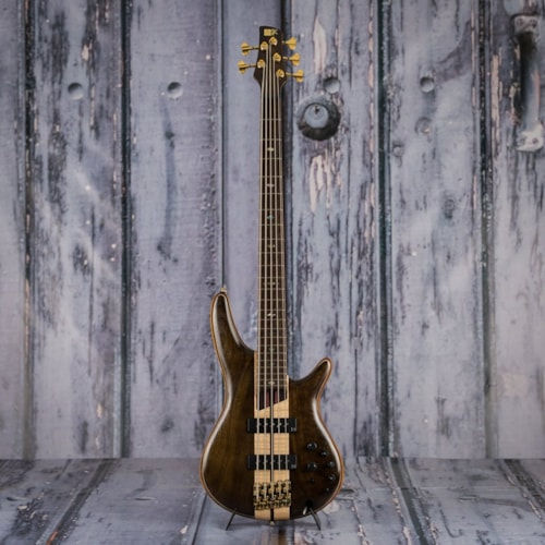 Ibanez SR1825E Premium 5-String Electric Bass, Natural Low Gloss