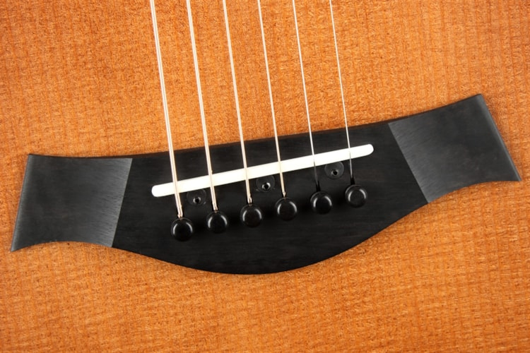 Taylor Builder's Edition 614ce WHB/V-Class Bracing
