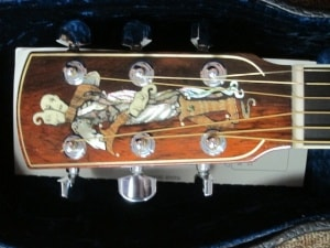 Larrivee Larrivee Custom D-10 Extinct Brazilian Rosewood/ Very Rare G Brand New, Original Hard, $6,998.00