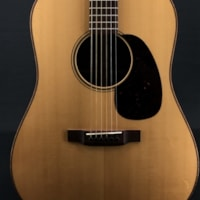 Martin Custom 12 Fret Dreadnought in Cocobolo with VTS Sitka Spruce Top