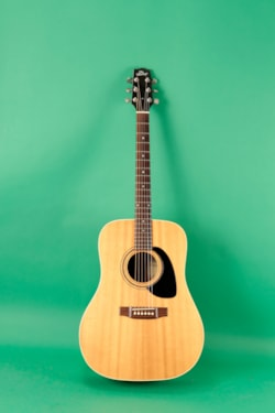 1991 Heritage HFT-445 acoustic/electric
