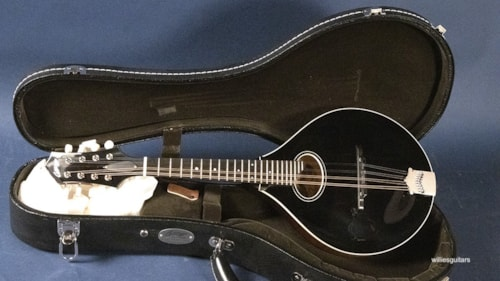 New Collings MT O