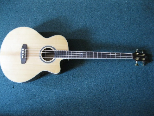 Ortega D558-4 Natural, Brand New, GigBag