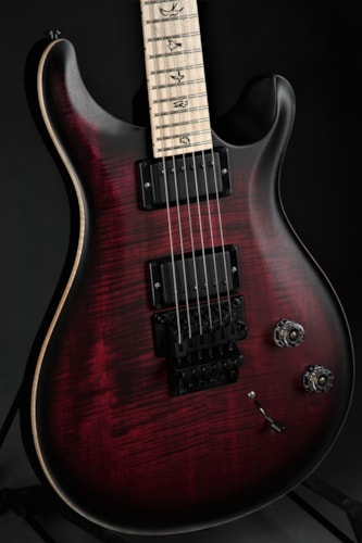 "Paul Reed Smith (PRS) DW (Dustie Waring) CE 24 ""Floyd"" Limited Edition - Waring Bu Brand New, GigBag"