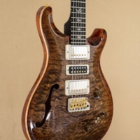 PAUL REED SMITH PRS Wood Library Special Semi Hollow - Autumn Sky w/ Rosewood Neck