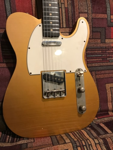 Protocaster Guitars Singlecut Roman Gold, Brand New, Original Hard