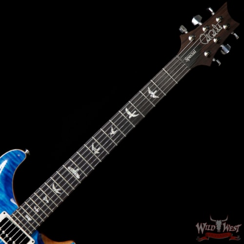 2019 PRS - Paul Reed Smith Paul Reed Smith PRS Semi-Hollow Limited Edition Special 22 Rosewood Fingerboard Aquamarine Aquamarine