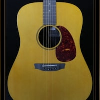 RainSong Vintage Series Dreadnought V-DR1100N2