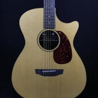 RainSong Vintage Series OM 12-Fret with LR Baggs Anthem Electronics