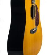 RainSong Vintage with SFT Soundboard - Amber Tint (570)
