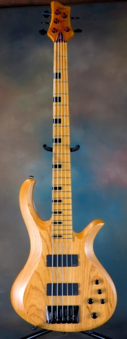 Schecter Riot 5 Session