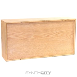 Synthrotek Case