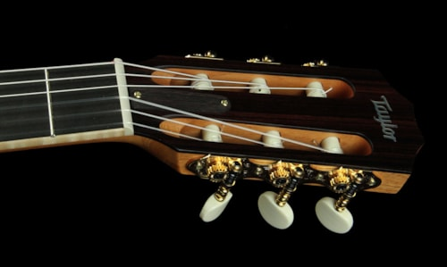 Taylor 814ce-N Indian Rosewood Nylon String Acoustic/Electric Guitar Natural Brand New, $3,199.00