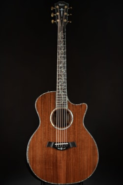 Taylor PS14ce Redwood/Cocobolo/V-Class Bracing