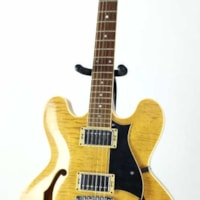 The Heritage Semi Hollow Electric Guitar