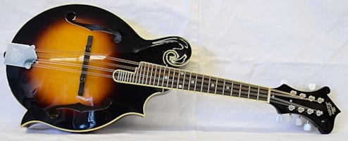 The Loar LM 520 VS