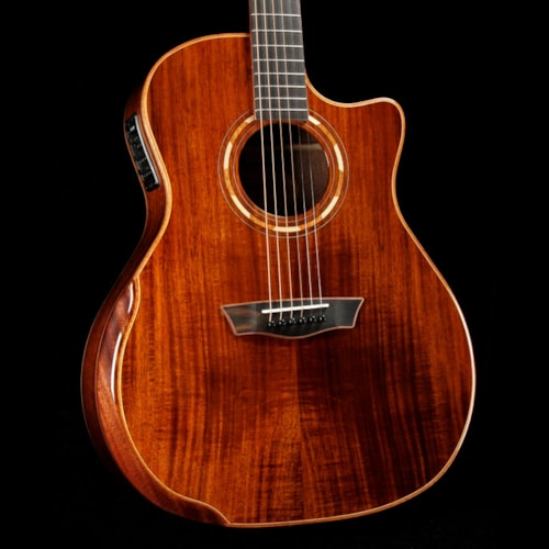 Washburn Comfort Series WCG55CE Koa Acoustic Brand New $749.00