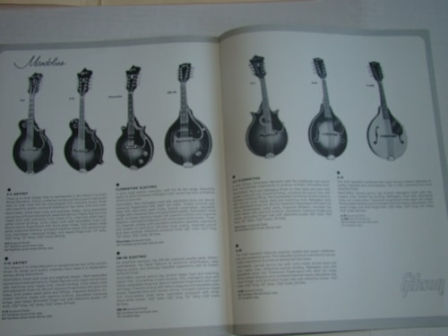 1955 Gibson Acoustic  Catalogs/$45.00 each