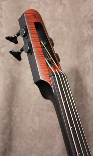 NS Design NXT Double Bass