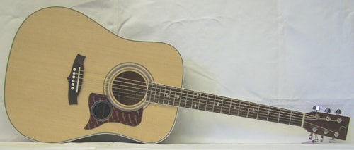 TANGLEWOOD TW15 NS