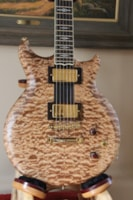 2011 Scott Walker Guitars Prototype Walker Prototype S/N 3