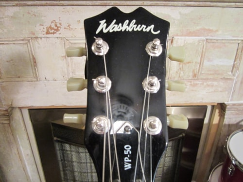 Washburn WP-50