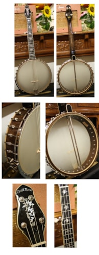 2012 Goldtone Cello Banjo, CEB-5