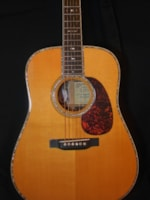 2006 Martin D-45 Mike Longworth