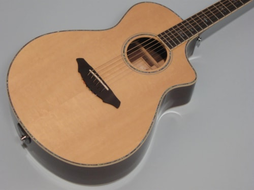 Breedlove Atlas Series Stage C25 SRe