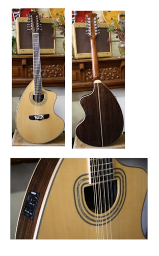 2013 Giannini Craviola 12 string