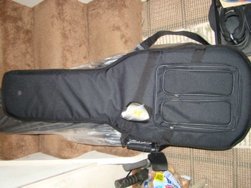 Guardian Guitar Gig Bag
