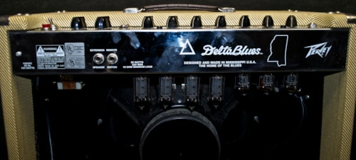 Peavey Delta Blues Combo