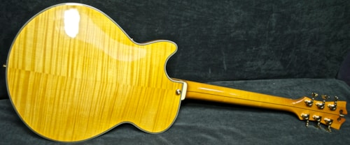2013 D'Angelico EX-SS