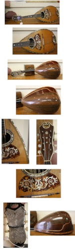 ~1910 LArson Brothers Mayflower Mandolin by Flower and Groeshl