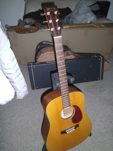 2000 Martin Sustainable Wood Series