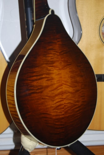 Collings MT-2