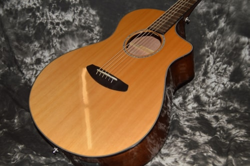 2015 Breedlove Pursuit Concert