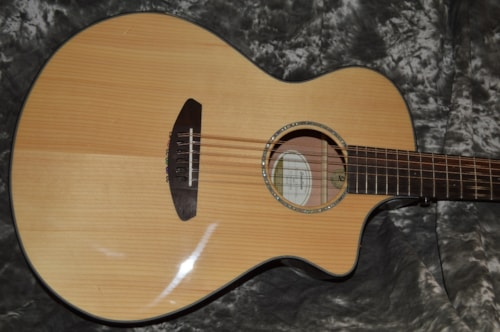 2015 Breedlove Pursuit 12 String