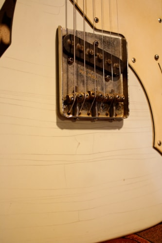 Protocaster Guitars Thinline
