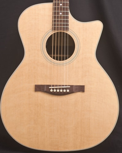 Eastman Guitars AC222CE