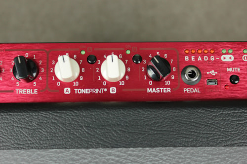 TC Electronics BG 250 Bass Amp
