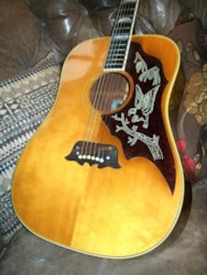 Epiphone Excellente FT-120