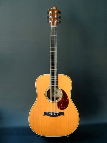 1999 Acoustic Guitar Sanctuary MD silver custom -91239-
