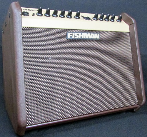 2015 Fishman LBX-500 Loudbox Mini