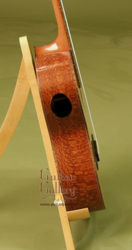 Lichty CrossOver Nylon String