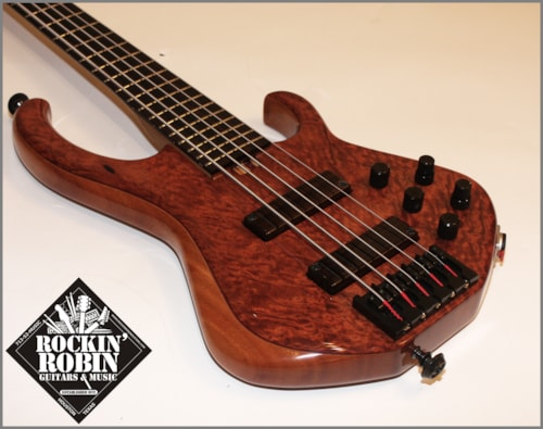 ~2013 Skjold Custom 5 String